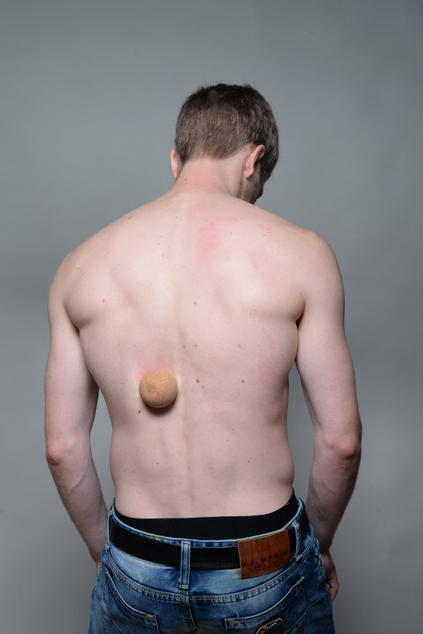 Atemberaubend Muskeln Von Rücken Fotos - Menschliche Anatomie Bilder ...
