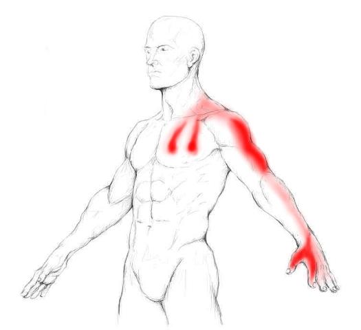 brustmuskeltraining zu hause mit 3 geheimen bungen deine brust muskeln trainieren. Black Bedroom Furniture Sets. Home Design Ideas