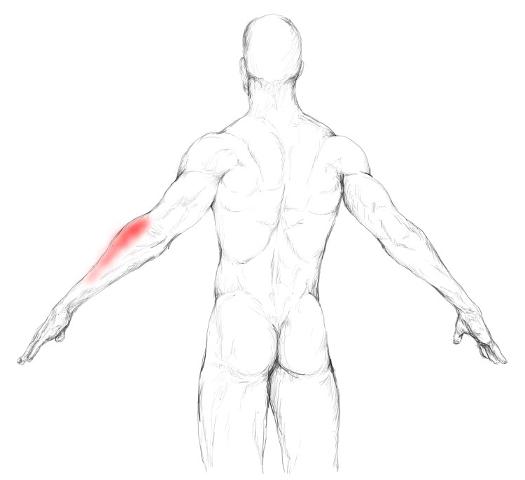 Scharfer Schmerz in der linken Seite unter den Rippen