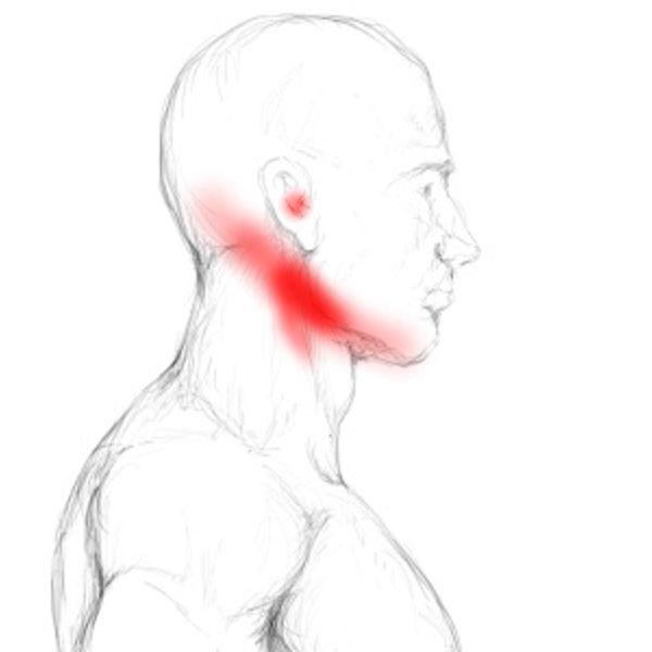 Digastricus Schmerzen & Triggerpunkte selbst behandeln